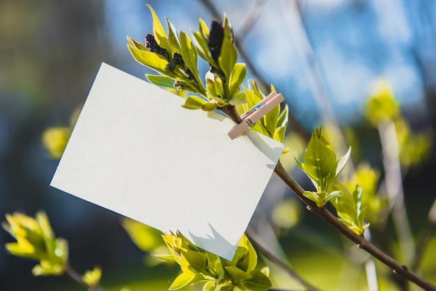 Hoja de papel blanco sobre una pinza para la ropa en una rama de color lila