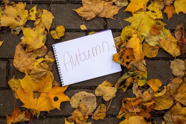 Una hoja de papel con la inscripción otoño se encuentra en hojas secas de otoño