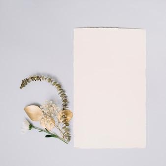 Hoja de papel con pequeñas ramas en mesa
