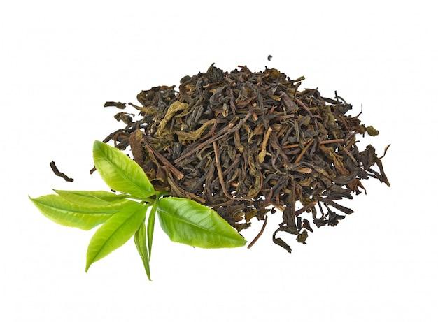 Hoja de té verde aislada sobre fondo blanco
