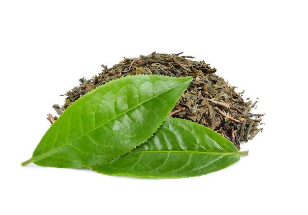 Hoja de té verde aislado sobre fondo blanco.