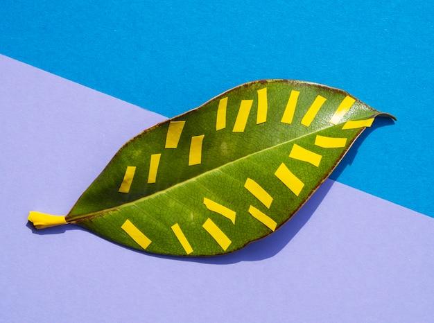 Hoja tropical en vibrantes colores vivos y líneas amarillas.