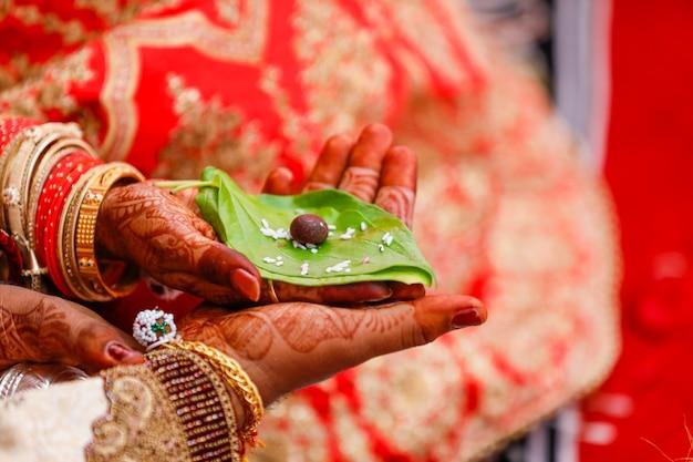Hoja verde y nuez de betel en el novio y la mano nupcial