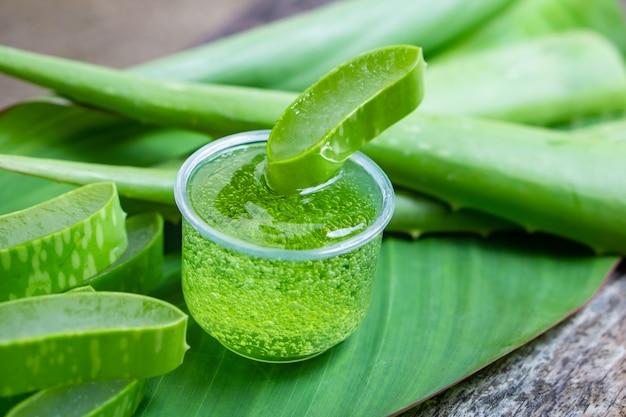 Hojas de aloe vera verde fresco y rebanada