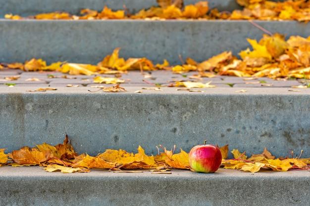 Hojas amarillas y manzana solitaria en los escalones de piedra