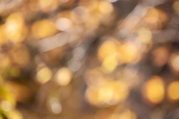 Hojas amarillas otoñales borrosas, luces bokeh