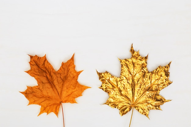 Hojas de arce natural pintadas de oro, diferentes hojas de otoño kit amarillo natural