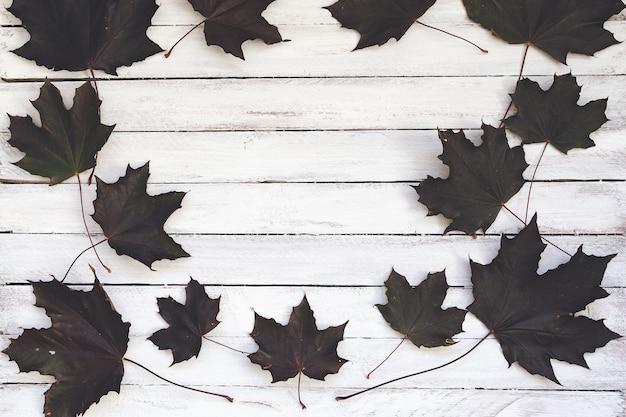 Hojas de arce oscuras del otoño en el tablero de madera, blanco.