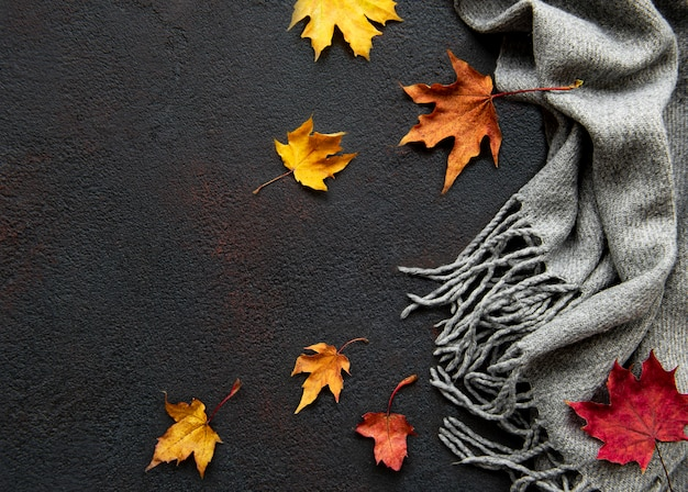 Hojas de arce otoñal y bufanda de lana sobre un fondo de hormigón negro. fondo de otoño.
