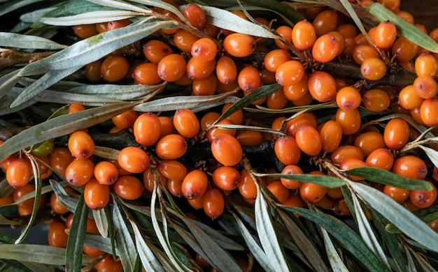 Hojas y bayas de naranja espino amarillo en mesa de madera