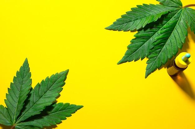 Hojas de cáñamo sobre un fondo amarillo con una burbuja de aceite cosmético. cannabis para la salud y la belleza, superalimento, cuidado de la piel, el poder de la naturaleza.