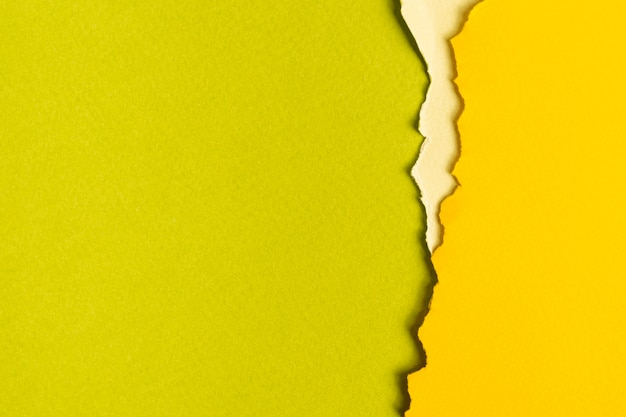 Hojas de cartón en tonos verdes con espacio de copia