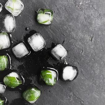 Hojas en cubitos de hielo