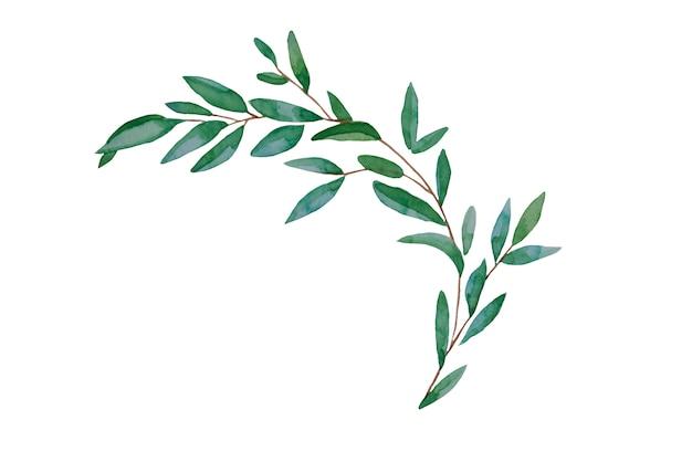 Hojas dibujadas a mano, ilustración acuarela. primavera verde y azul, elemento botánico de pascua.