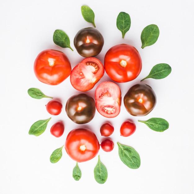 Hojas de espinaca alrededor de los tomates