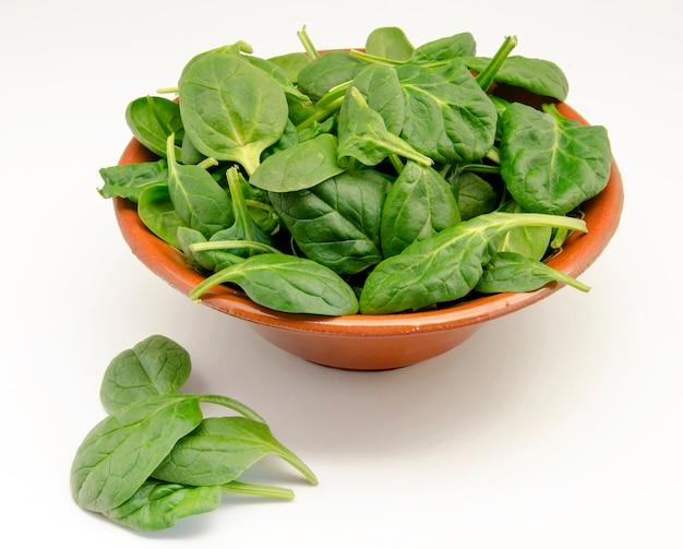 Hojas de espinaca verde fresca