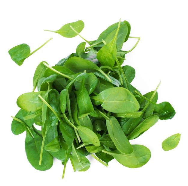 Hojas de espinaca verde