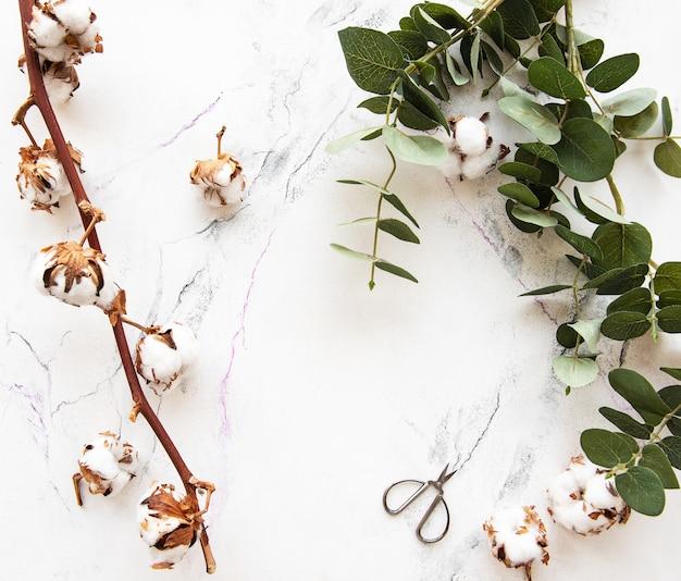 Hojas de eucaliptus y flores de algodón.