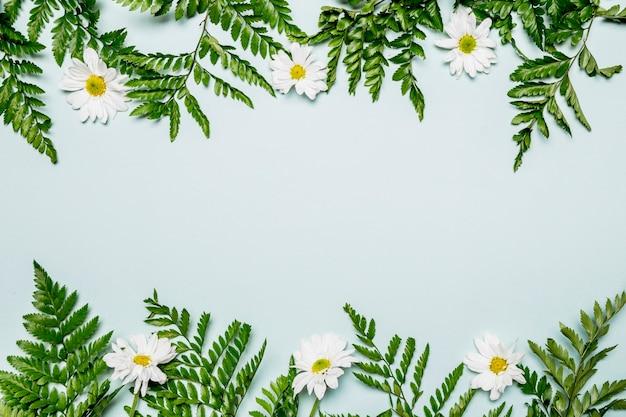 Hojas y flores sobre fondo azul claro.
