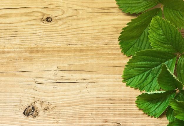 Hojas de fresa sobre fondo de madera
