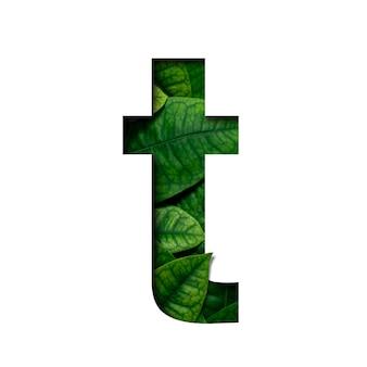 Las hojas de fuente están hechas de hojas reales con forma de corte de papel precioso.