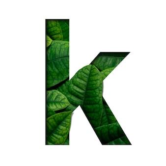 Hojas de fuente k hechas de hojas vivas reales con forma de corte de papel precioso.