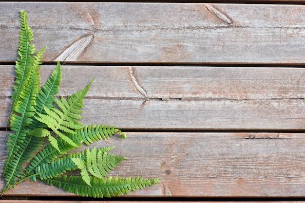 Hojas de helecho en la esquina inferior izquierda sobre un fondo de madera
