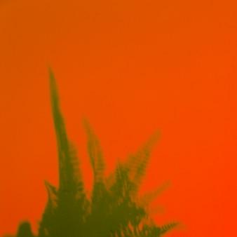 Hojas de helecho verde sobre un fondo naranja