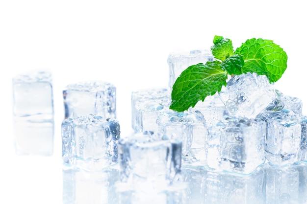 Hojas de menta en el cubo de hielo aislado