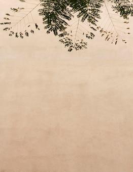 Hojas naturales y fondo de pared de espacio de copia