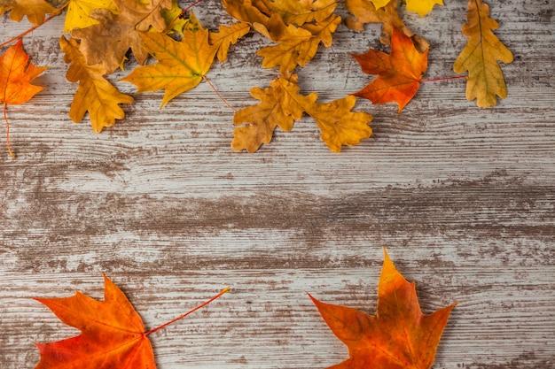 Hojas de otoño de arce de roble rojo amarillo. sobre superficie de madera. textura