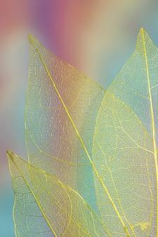 Hojas de otoño de colores vibrantes abstractos