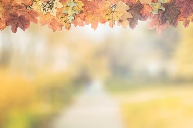 Las hojas de otoño como marco superior