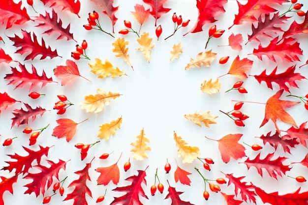 Hojas de otoño, endecha plana, vista superior en tonos rojos y naranjas sobre fondo blanco.