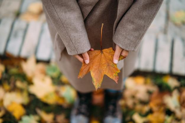 Hojas de otoño en manos de la niña.