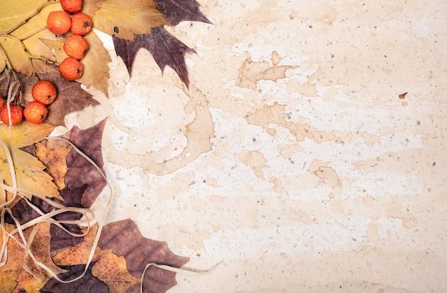 Hojas de otoño en papel viejo