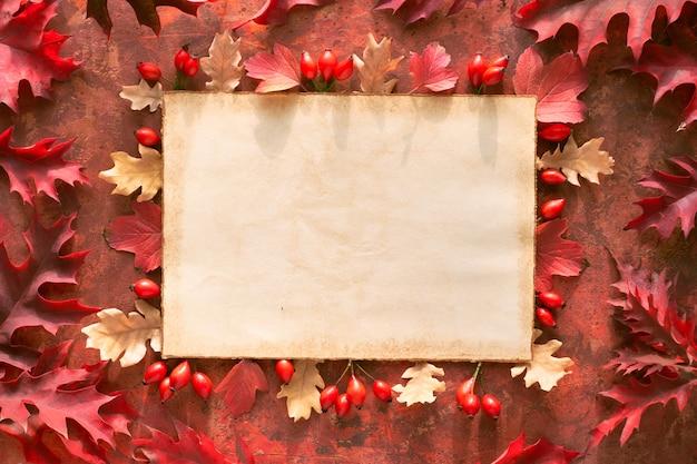 Hojas de otoño, planas en tonos rojos y naranjas sobre fondo pintado brillante. hojas de roble rojo y amarillo y frutos de rosa mosqueta.