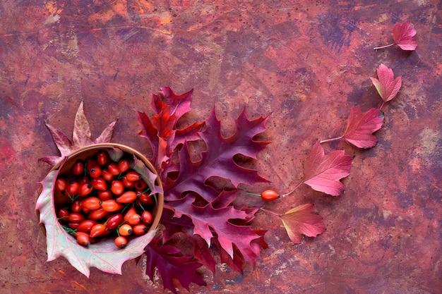 Hojas de otoño, planas en tonos rojos sobre fondo texturizado pintado vibrante. hojas de roble rojo y fruta de escaramujo en frasco de bambú.