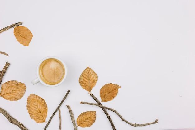 Hojas de otoño; ramita y taza de café aisladas sobre fondo blanco