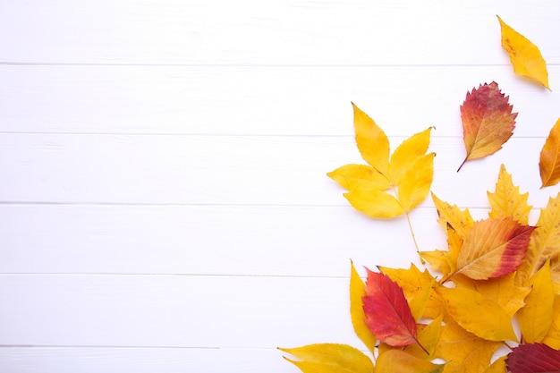 Hojas de otoño rojas y anaranjadas en la tabla blanca