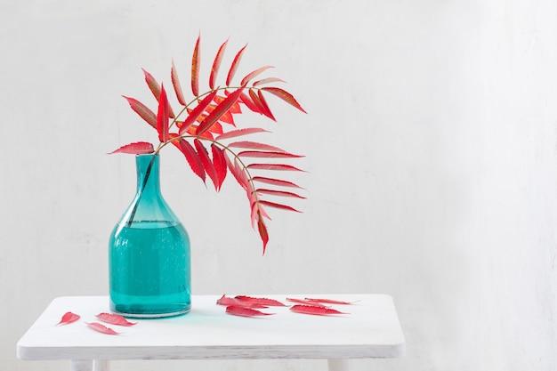 Hojas de otoño rojas en florero de vidrio sobre mesa de madera sobre fondo blanco.