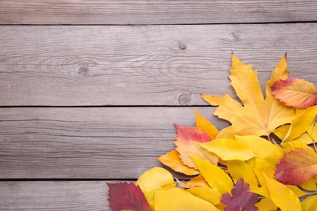 Hojas de otoño rojo y naranja en mesa gris