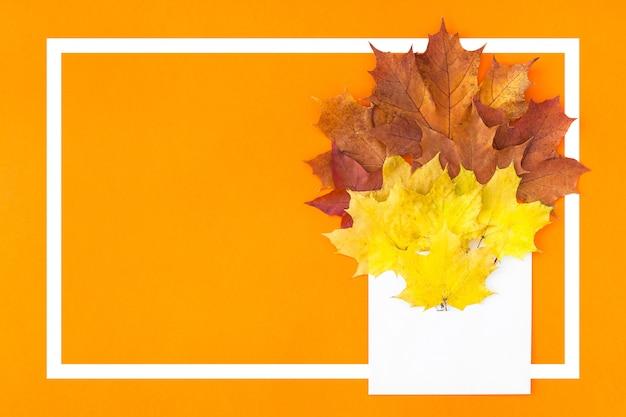Hojas de otoño en sobre de papel