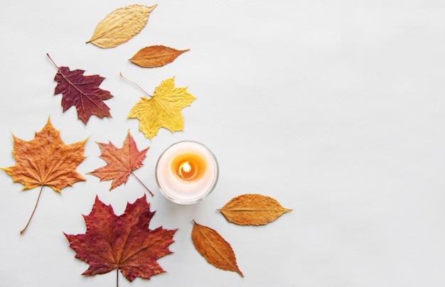 Hojas de otoño y velas sobre fondo blanco.