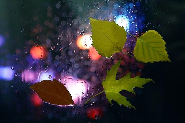 Hojas de otoño en una ventana mojada sobre un fondo de clima lluvioso