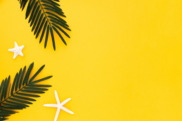 Hojas de palma con estrellas de mar sobre fondo amarillo