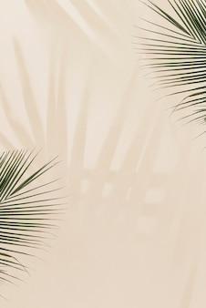 Hojas de palma frescas sobre fondo beige