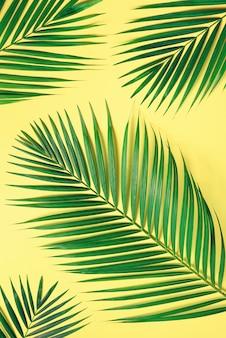 Hojas de palma tropicales en fondo amarillo en colores pastel. concepto de verano mínimo. plano creativo con espacio de copia. vista superior de la hoja verde sobre papel de colores pastel pegajosos.