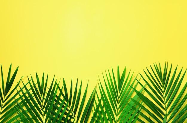 Hojas de palma tropicales en fondo amarillo en colores pastel. concepto de verano mínimo. vista superior de la hoja verde sobre papel de colores pastel pegajosos.