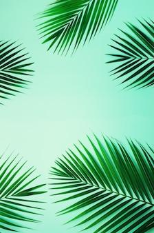 Hojas de palma tropicales en fondo azul en colores pastel. concepto de verano mínimo. vista superior de la hoja verde sobre papel de colores pastel pegajosos.